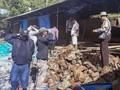 Longsor di Pemandian Kabupaten Karo, 7 Mahasiswa Tewas