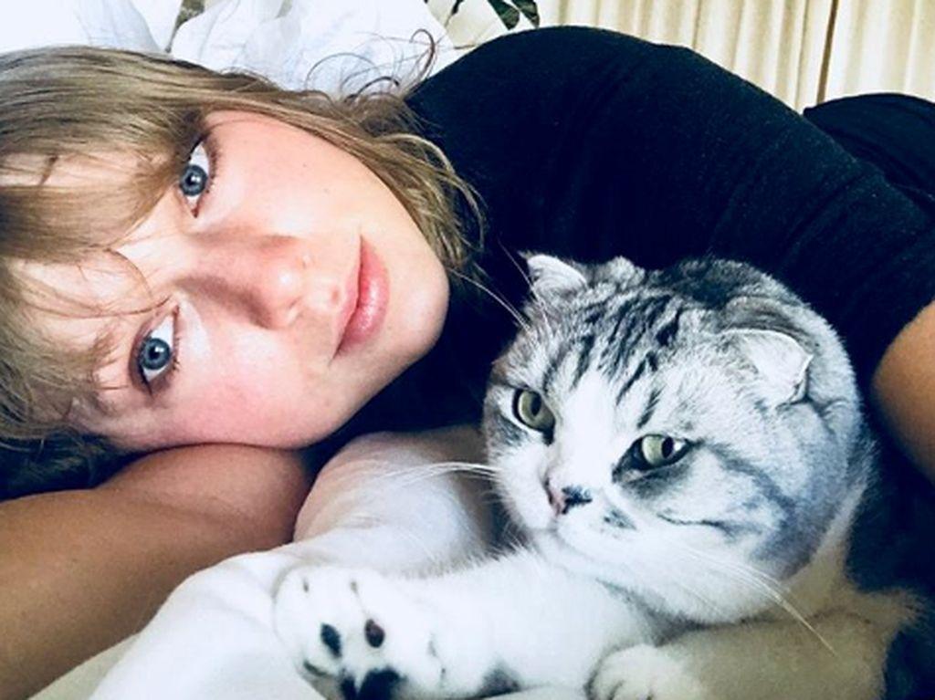 Taylor beberapa kali menyebut bahwa kucing miliknya itu sebagai bayinya.Dok. Instagram/taylorswift