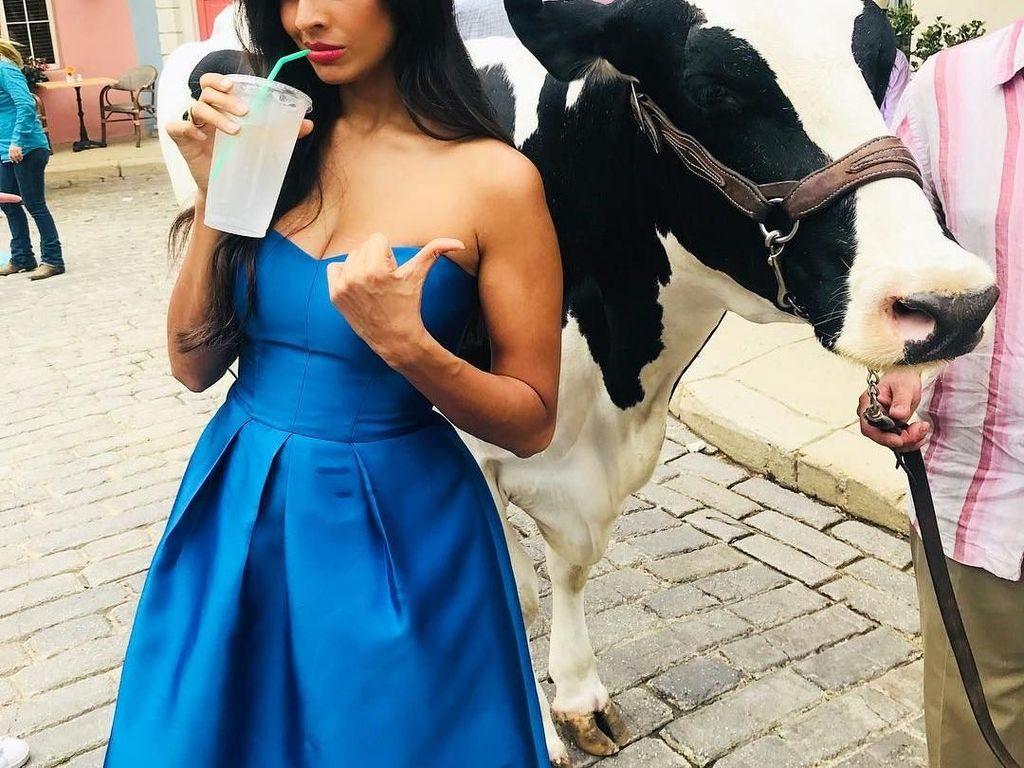 Kini Jameela membintangi serial The Good Place. Saat di lokasi syuting, Jameela asyik menyeruput minuman dingin. Ditemani sapi, makin asyik ya? hihi. Foto: Instagram jameelajamil