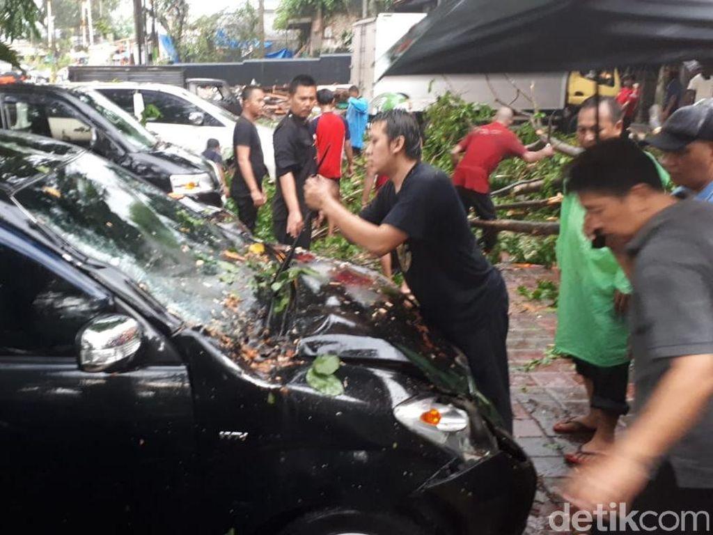 Di depan ruko di Jalan Batutulis No 110 ada 6 kendaraan yang ringsek akibat tertimpa pohon.