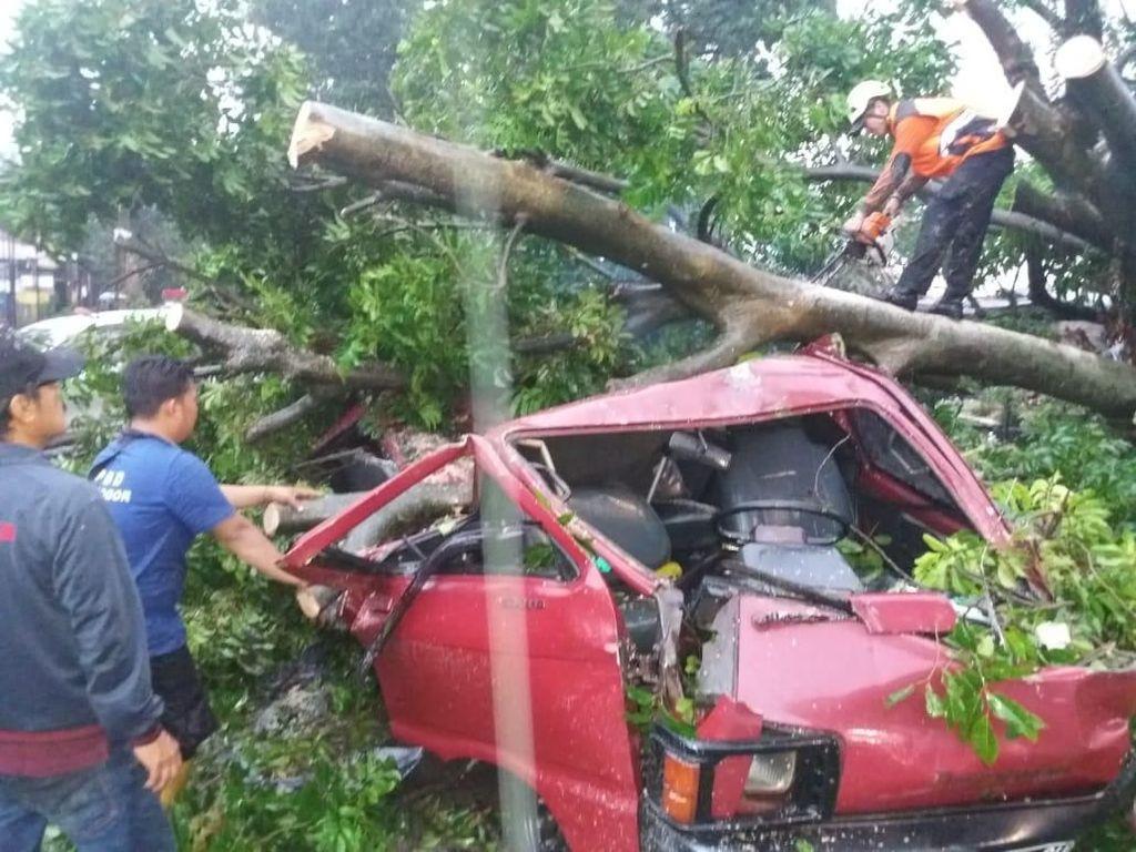 Petugas mengevakuasi kendaraan yang tertimpa pohon. (Foto: dok. BNPB)