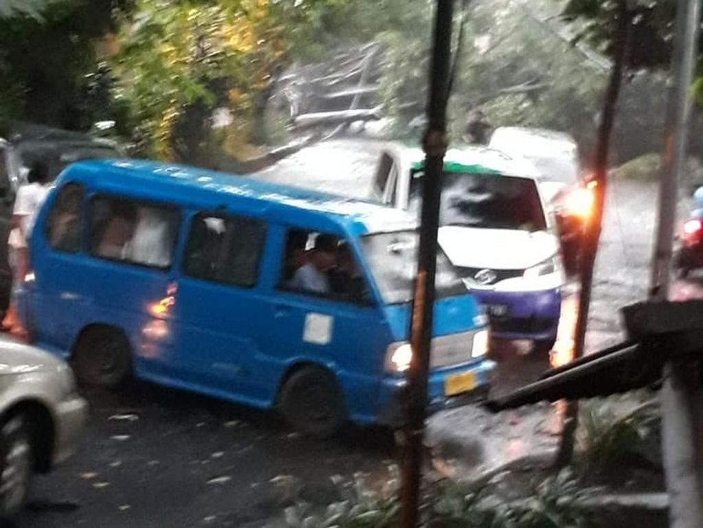 Pohon tumbang menyebabkan jalan tertutup. Sejumlah kendaraan putar balik mencari jalan lain (Foto: dok. BNPB)