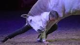 Seorang pria asal Perancis yang merupakan pelatih kuda, Jean Francois Pignon, tampil bersama kudanya di atas panggung Papp Laszlo Arena di Budapest. (Photo by ATTILA KISBENEDEK / AFP)