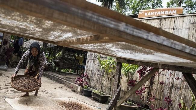 Dalam menjalankan produksinya, Sahnawi turut dibantu ibunya, Jumaira, yang berumur 100 tahun, serta anaknya Rizki. Mereka meneruskan tradisi pembuatan kopi yang menghasilkan kopi bercita rasa tersendiri. (ANTARA FOTO/M Agung Rajasa)