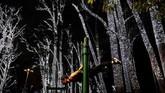 Seorang pria berolahraga dekat pohon yang dihias oleh lampu-lampu natal di taman Ibirapuera di Sao Paulo, Brasil. (REUTERS/Nacho Doce)
