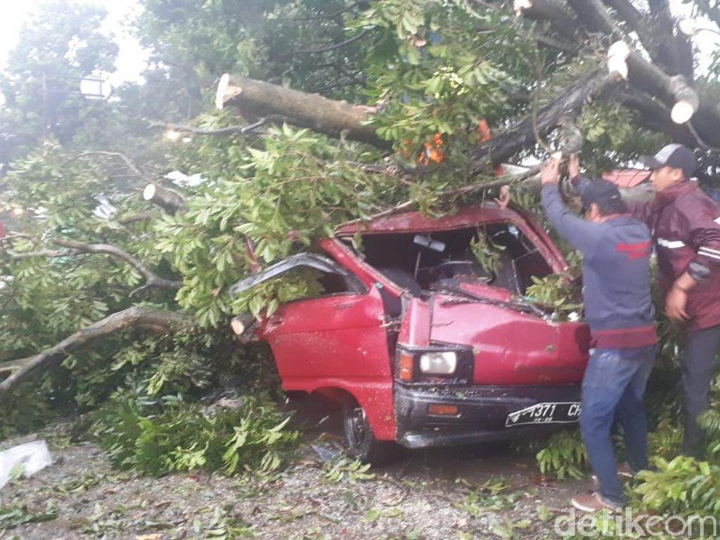 Di depan ruko di Jalan Batutulis No 110, ada enam kendaraan yang ringsek akibat tertimpa pohon. Titik kedua, di Jalan Siliwangi No 59, ada mobil Carry bernomor polisi F-1371-CH yang juga ringsek berat tertimpa pohon kenari (Farhan/detikcom)