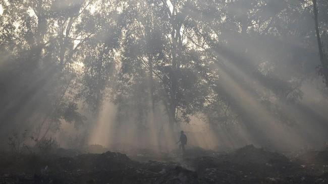 Seorang pria India berjalan di hutan yang dikelilingi oleh kabut dan asap dari kebakaran hutan di Jalandhar. Di India bagian utara, level asap kabut meningkat tajam ketika kualitas udara melewati batas aman yang ditetapkan Badan Kesehatan Dunia (WHO). (Photo by Shammi MEHRA / AFP)