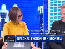 Dubes Uni Eropa: Tidak Ada Larangan Impor CPO dari Uni Eropa