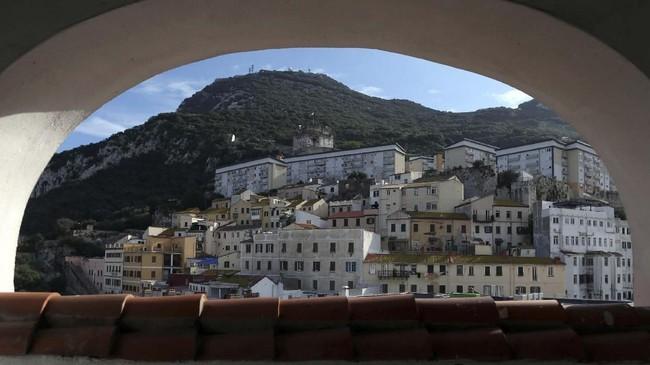 Selain bagi pecinta wisata bahari, Gibraltar juga menjadi destinasi favorit bagi pecinta wisata pengamatan burung. Gibraltar sering dilewati315 spesies burung yang bermigrasi dari Afrika Utara ke Eropa setiap tahunnya. (REUTERS/Jon Nazca)