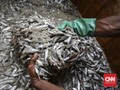 Bahaya Kesehatan di Balik Gurih Ikan Asin