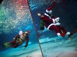 Indahnya Pertunjukan Bawah Air Bersama Mr Santa Claus!