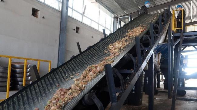 Di pabrik pengolahan limbah Shandong Qiaobin Agricultural Technology Co, di Jinan, Shandong Timur, satu miliar kecoak diberi makan 50 ton sampah dapur setiap harinya. (REUTERS/Thomas Suen)