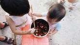Selain menjual kecoaknya, Li dan anak-anaknya juga memakan kecoak itu karena dipercaya baik untuk kesehatan. (REUTERS/Thomas Suen)