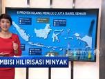 Ambisi Hilirisasi Minyak Jokowi