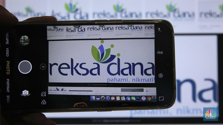 Reksa Dana menurut istilahnya mengandung arti menjaga dana, diterbitkan pertama kali oleh perusahaan BUMN bernama PT Danareksa.