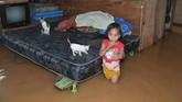 Seorang anak berada di dalam rumahnya yang terendam banjir di Kota Baru, Jambi, Minggu (9/12). Puluhan rumah, sekolah, dan beberapa titik jalan di kota itu terendam akibat meluapnya beberapa anak sungai setelah hujan mengguyur daerah itu selama beberapa jam. (ANTARA FOTO/Wahdi Septiawan/foc).