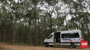 Menerjang Badai di Taman Nasional Tamborine