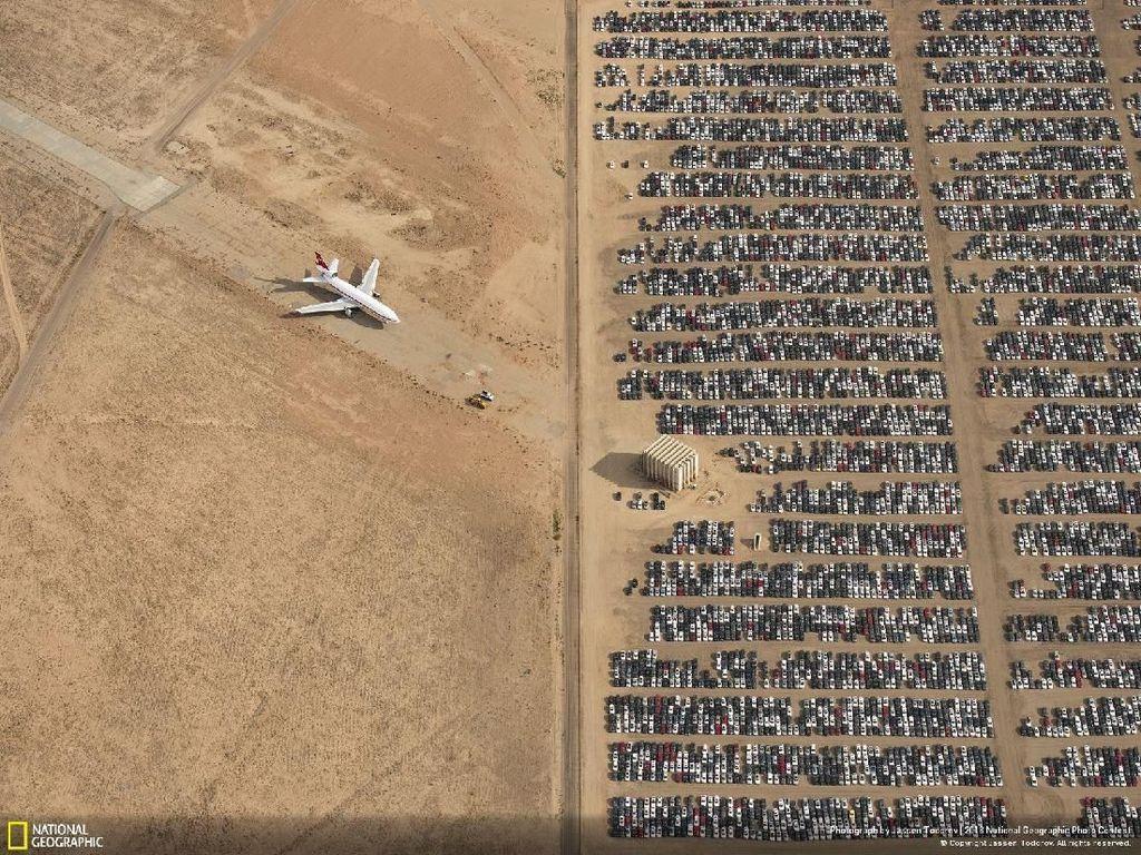 Deretan Jawara Kontes Foto National Geographic 2018