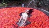 Seorang peserta dikelilingi oleh cabai merah, ambil bagian alam kompetisi makan cabai di pemandian air panas di Yichun, Provinsi Jiangxi, China. (Chen Fei/CNS)