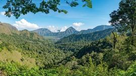 'Warisan' Jepang di Jalur Hutan Pusuk