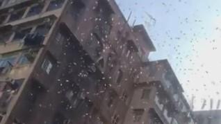 Lelaki Hong Kong Ditangkap Gara-gara Bikin Hujan Uang