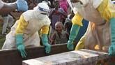 Jika dirata-ratakan, virus ebola membunuh sekitar setengah dari mereka yang terinfeksi. (REUTERS/Goran Tomasevic)