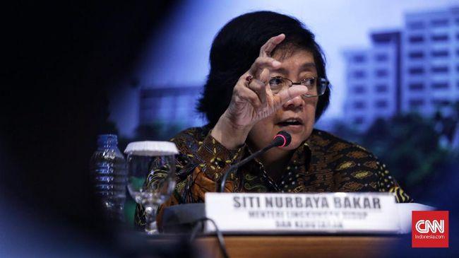 Riau Siaga Karhutla, BNPB Kirim Dua Helikopter