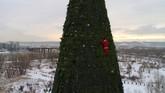 Foto udara menunjukkan seorang pemanjat yang berpakaian seperti Santa Klaus sedang menghias pohon natal setinggi 57 meter di sebuah taman di Pulau Tatyshev, dekat sungai Yenisei, di kota Krasnoyarsk, Rusia. (REUTERS/Ilya Naymushin)