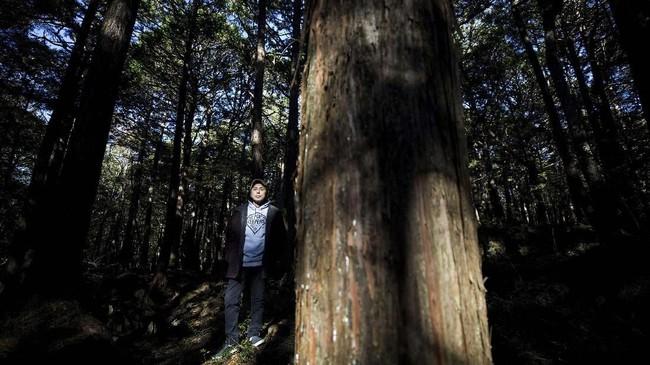 Watanabe percaya musik adalah cara untuk menjangkau hati orang-orang yang sedang dilanda kekacauan. Tak sedikit orang yang putar balik tak jadi datang ke hutan karena mendengar suara yang gaduh dari rumahnya.