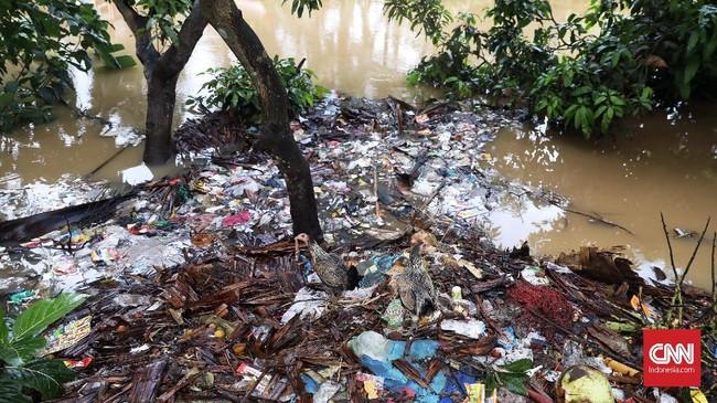 Ada sekitar 200 orang yang tinggal di RT04/03. Hampir semuanya kini mengungsi di Kantor Kecamatan Labuhan. (CNN Indonesia/Hesti Rika).