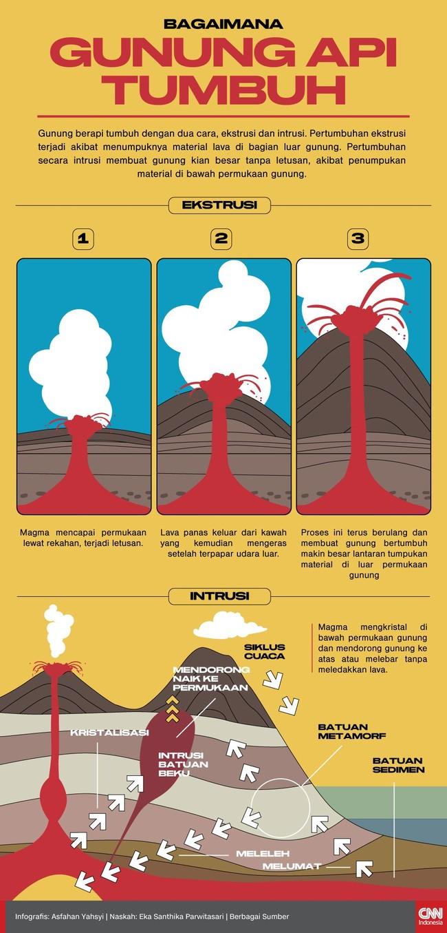 INFOGRAFIS: Proses Tumbuh Gunung Berapi Anak Krakatau