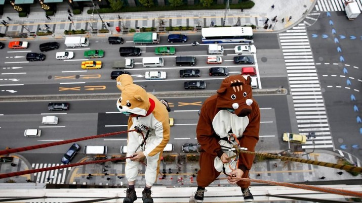 Di Tokyo, Ada Anjing Tanah dan Babi Hutan Bersihkan Jendela