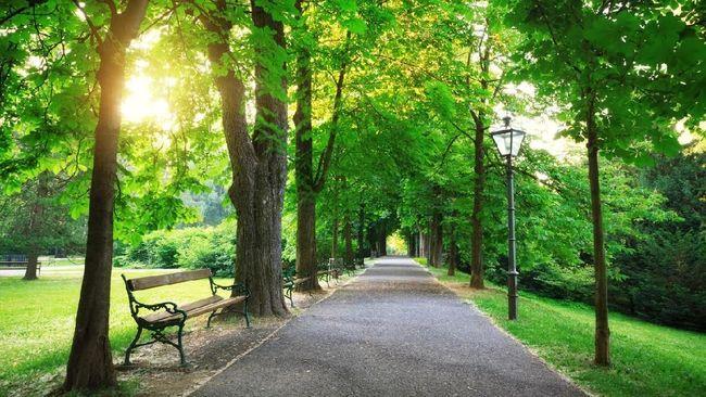 Wisata Sambil Belajar Sejarah di Taman Wilhelmina
