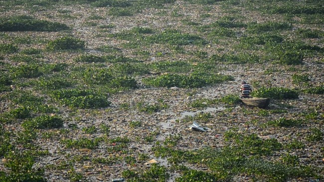 Warga mencari ikan diantara sampah dan eceng gondok di Sungai Citarum Kawasan Batujajar, Kabupaten Bandung Barat, Jawa Barat,26 Juni 2018. ANTARA FOTO/Raisan Al Farisi