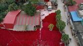Tradisi membuat dupa di Desa Quang PhuCau sudah dimulai sejak 100 tahun silam.