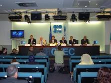 OPEC+ Bikin Kejutan, Harga Minyak Naik 1%