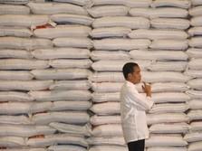 Masih Rajin Impor Beras, Swasembada Bagaimana Pak Jokowi?