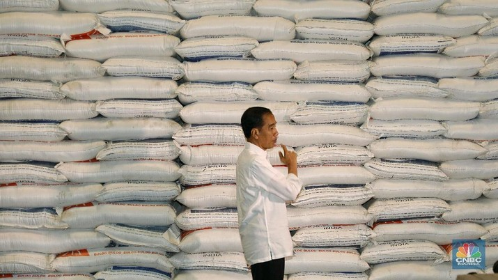 Soal 'Jokowi Hobi Impor Beras', Kemendag Keluarkan Data Baru