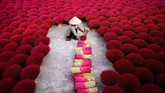 Seorang perempuan mengumpulkan dupa di Desa Quang Phu Cau di pinggiran Hanoi, Vietnam. Desa yang dijuluki Desa Dupa ini, ratusan pekerja mengeringkan dan meraut bambu untuk dijadikan dupa jelang Tahun Baru China awal Februari mendatang. (AFP/Manan Vatsyayana)