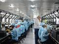 OPPO Gelontorkan Rp20 T untuk Riset Teknologi