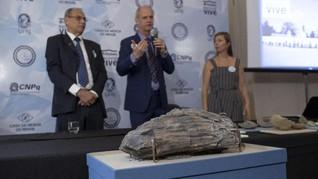 Museum Brasil Adakan Pameran Pertama Sejak Terbakar