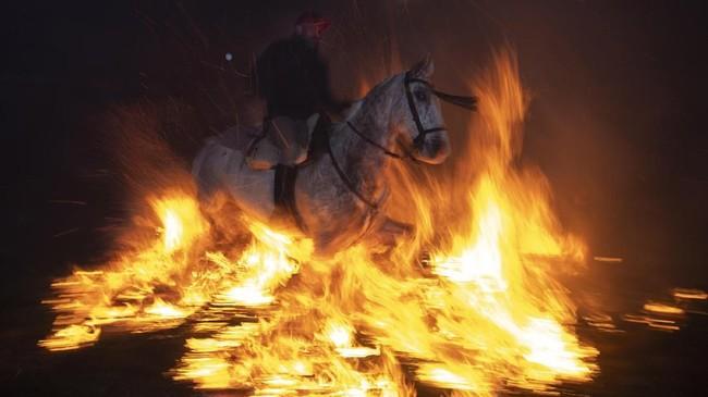 Namun pandangan tersebut ditentang olehMaría Jesus Martin, Walikota San Bartolome de Pinares. Martin menilai tidak ada hewan yang tersiksa atau pun terluka dalam festival kuno ini. (AFP/GABRIEL BOUYS)