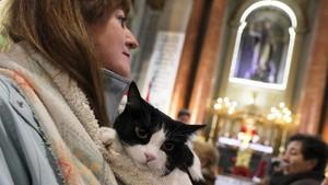 Memberkati Anjing dan Kucing Peliharaan di Gereja Madrid