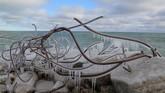 Salju yang meliputi rangka baja di lokasi pembuangan akhir di Tommy Thompson Park Ontario, Kanada. (Reuters/Chris Helgren)