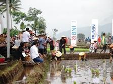 Jokowi: Petani yang Dapat KUR Jangan Dipakai Beli Motor!