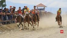 VIDEO: Pacu Kuda Gayo, Budaya Tandai Akhir Masa Panen
