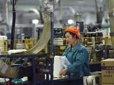 Pabrik Kertas RI Hengkang ke Vietnam, Ternyata Ada Intrik