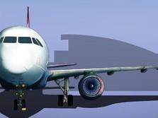 Mudik Dilarang, Jokowi Bolehkan Pebisnis Naik Pesawat Terbang