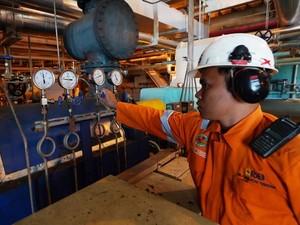 Melongok PLTU Tenayan di Riau