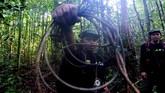 Selain kelapa sawit, beberapa oknum juga memasang perangkap untuk menjebak Harimau Sumatra. Para rangerkerap melakukan aksi bersih-berish ranjau, gunamenyelamatkan satwa endemik itu.